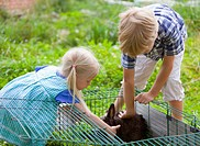 Germany, Bavaria, Boy and girl petting rabbit in garden