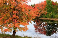 an autumn lake scene in the Adirondack Mountains in the USA