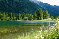 Germany, Bavaria, View of pond with alps