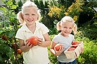 Germany, Bavaria, Girls gathering tomatoes in vegetable garden