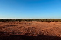 Algerische Sahara