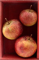 Three red apples stacked in a wooden box
