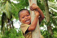 Indonesia, Sumatra, Banda Aceh, young smiling boy climbing tree