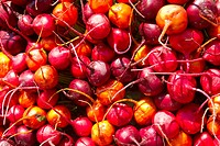Beets at a farmer´s market, Boulder, Colorado