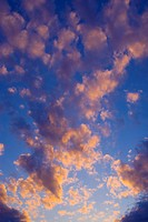 Pink clouds and blue sky at sunset