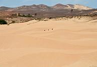 Wüste von Viana auf der Insel Boavista Kapverden