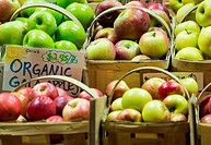 Fresh organic apples at a farm market