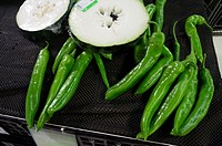 Giant green chilli for sale at Guangzhou wet market, China