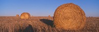 Hay Bails, Highway 29, South Dakota