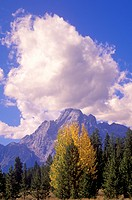 Grand Teton National Park in Autumn, Jackson, Wyoming