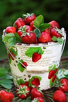 Freshly picked strawberries in a bucket decorated with strawberries