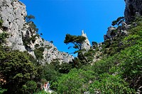 The calanques of En Vau, Cassis, Bouches du Rh&#244;ne, 13, PACA, France