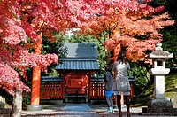 Autumn  fall  colours surround a Shinto shrine outside Tenryu-ji Temple, Kyoto, Japan