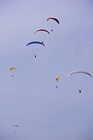 A wide view of a group of Paragliders gliding at Wilderness