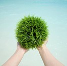Holding a green grassy ball in the palms.