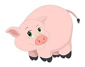 Cute pink pig, vector illustration
