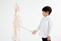 A boy shakes hands with human skeleton