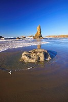 Rock formations at low tide on bandon beach, oregon, united states of america