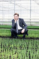 Germany, Bavaria, Munich, Mature man in greenhouse between seedlings (thumbnail)