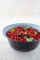Bowl full of cornel cherries on table