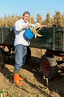 Germany, Bavaria, Farmer dumping corn from bucket into his tractor