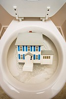 Close_up of toilet with toy house