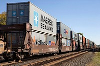 Container cargo on a freight train