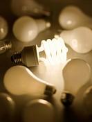 energy efficient light bulb among regular bulbs