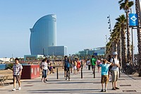 Beach of La Barceloneta  Barecelona