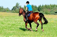 Girl with German Riding Horse, trail ride / German Warmblood