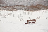 Bench in a picnic field covered with snow