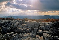 Autumn Scenic, Dolly Sods, Monongahela NF, West Virginia