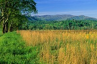 Spring Landscape, Cades Cove, Great Smoky Mountains NP, TN