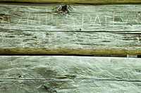 Graffiti on Historic Log Structure, Great Smoky Mtns Nat Park, TN