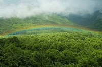 Rainbow, Bullhead Overlook, Great Smoky Mtns Nat. Park, TN