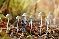 photomontage, little girl and fungus, Mycena leptocephala, Forest of Rambouillet, Yvelines department, Ile-de-France region, France, Europe