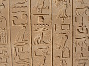 Ancient Egyptian reliefs
