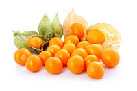 Cape gooseberry physalis isolated