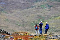 Tourists in Autumn, Northest Passage, Nunavut, Canada