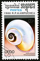 Cambodia,post mark,stamp,molluscs, shell ,nature