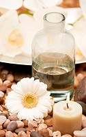 A calming image of a daisy beside a clear bottle of water and an aromatic candle at a spa