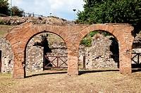 Pompeii _ archaeological site