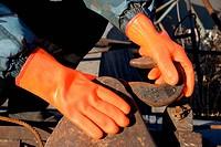 orange gloves