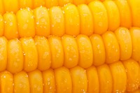 boiled corn with salt closeup