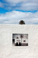 Palm tree and tile picture, Lanzarote, Canary Islands, Spain, Europe