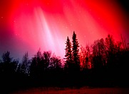 Brilliant Red Aurora over Boreal Forest, Little Susitna River Valley, Alaska