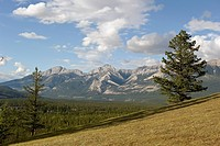 Landscape Of The Foothills And Rocky Mountains, Alberta Canada