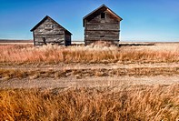 Two farm buildings in a prairie ghost town.