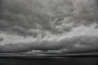 Seagulls fly over the atlantic ocean under dark and stormy skies, iceland