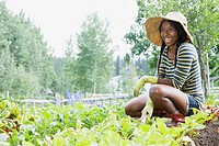 Pretty, African_American woman working in vegetable garden.
